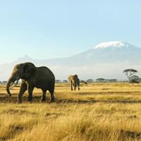 Afrika Reiseziele Rundreisen