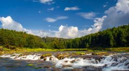 Reiseziel Ooty Südindien