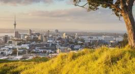Destination Auckland New Zealand