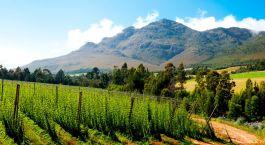 Destination George South Africa