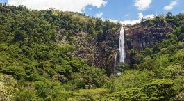 Reiseziel Haputale Sri Lanka