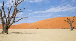 Destination Western Caprivi Namibia