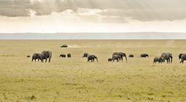 Destination Tana Delta Kenya