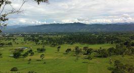 Reiseziel Pitalito Kolumbien