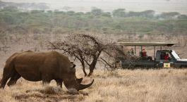 Destination Laikipia – Lewa Kenya