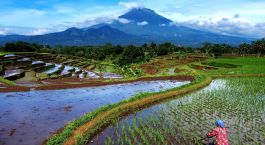 Destination Magelang Indonesia