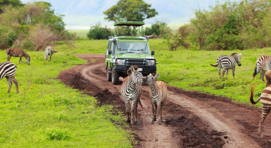Empfohlene Individualreise, Rundreise: Tansania –  Vom Kilimanjaro bis nach Sansibar