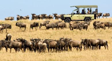 Empfohlene Individualreise, Rundreise: Tansania – die wilden Schätze des Nordens