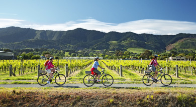 Example private tour: Road Trip: New Zealand's Classic Wine Trail