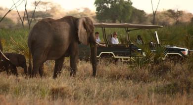 Empfohlene Individualreise, Rundreise: Kenia – Flug-Safari und Strand