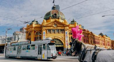 Empfohlene Individualreise, Rundreise: Australien: Großstadtleben & Great Barrier Reef