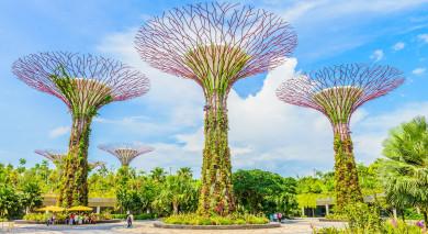 Empfohlene Individualreise, Rundreise: Singapur & Indonesien vom Feinsten: Im Reich der Tausend Inseln