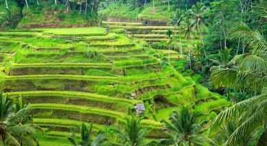 Empfohlene Individualreise, Rundreise: Singapur und Bali – Klassiker und Strand
