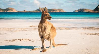 Empfohlene Individualreise, Rundreise: Australien – Tasmanien Roadtrip