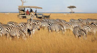 Empfohlene Individualreise, Rundreise: Kenia & Sansibar Reise: Safaris & Strände