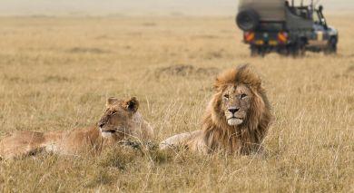 Empfohlene Individualreise, Rundreise: Luxus am See, Wildnis und wilde Tiere in Tanzania