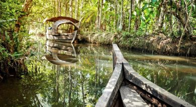 Example private tour: Ayurveda: Nature's Remedy