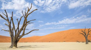 Example private tour: Classic Northern Namibia