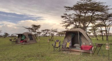 Example private tour: Kenya: Walking Safari & Beach Bliss