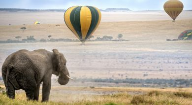 Example private tour: Classic Kenya: Samburu, Masai Mara and Beach Break