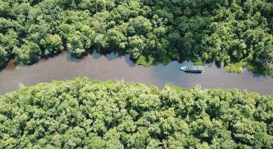 Empfohlene Individualreise, Rundreise: Orangutans und Tempel von Indonesien
