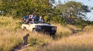 Example private tour: South Africa Overland: Highlights of the Cape
