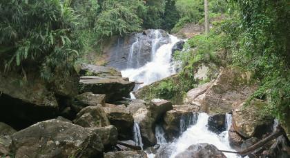 Destination Sinharaja Rainforest in Sri Lanka
