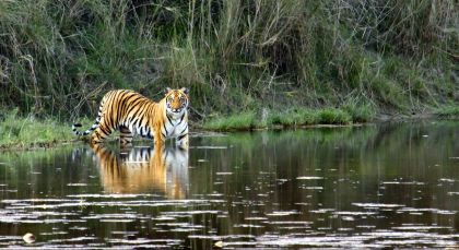Reiseziel Pench in Zentral- & Westindien