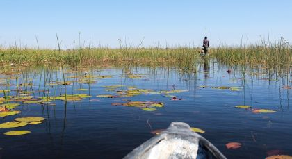 Reiseziel Maun in Botswana