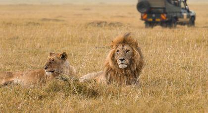 Destination Masai Mara in Kenya