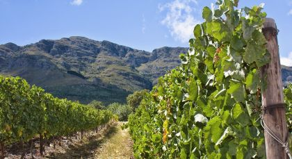 Destination Winelands in South Africa
