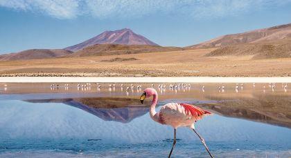 Reiseziel Uyuni in Bolivien