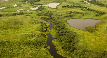 Nördliches Pantanal in Brasilien