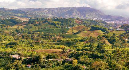 Destination Coffee Region in Colombia