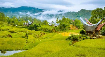 Toraja in Indonesien
