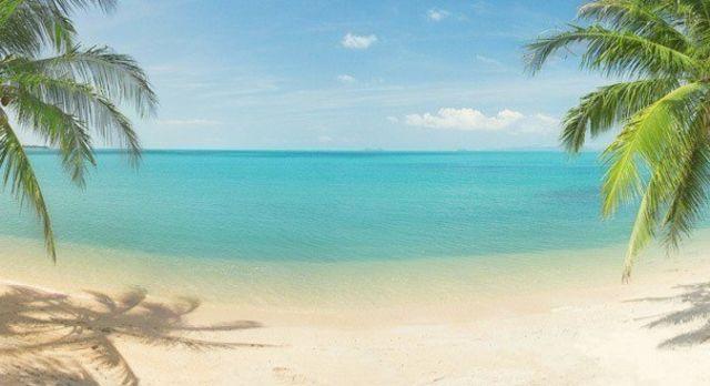 Beaches Tours & Trips