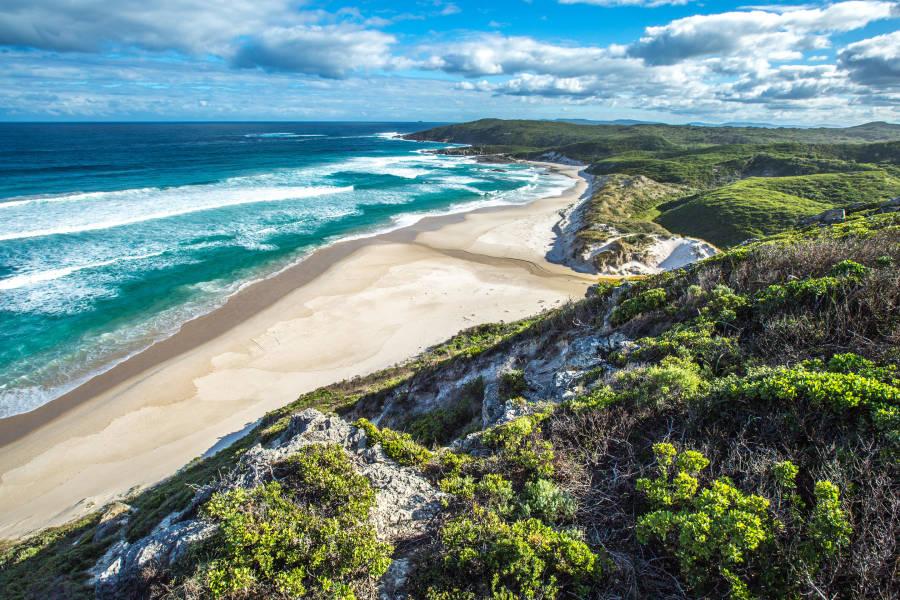 a rocky beach next to the ocean