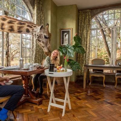a man sitting at a table looking at a giraffe