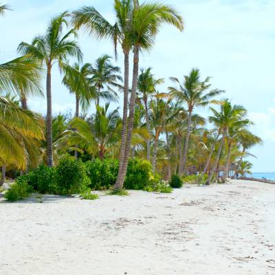 Beach View in Zanzibar