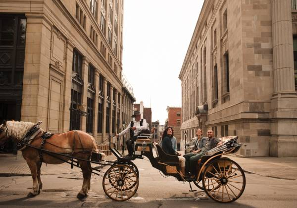 a man riding a horse drawn carriage on a city street