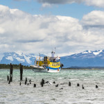 Enchanting Travels Chile Tours Fishing boat and old Dock, Puerto Natales, Antartica