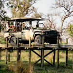 Jeep safari at Pom Pom Camp in Okavango Delta, Botswana
