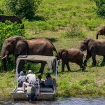 People watching Elephants from a boat Chobe National Park Botswana Africa