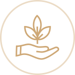 Palm Growth Icon
