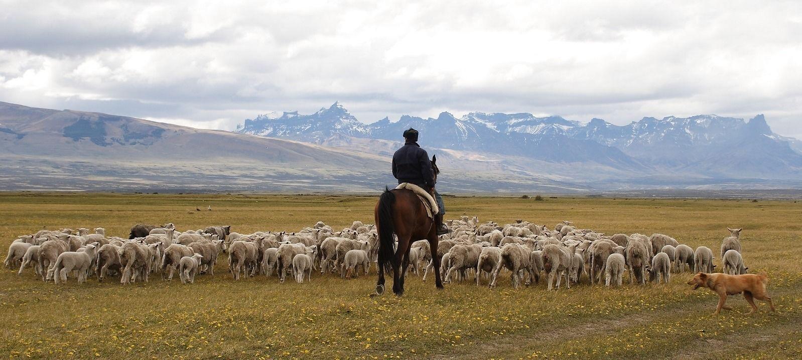 Patagonia Chile Tour