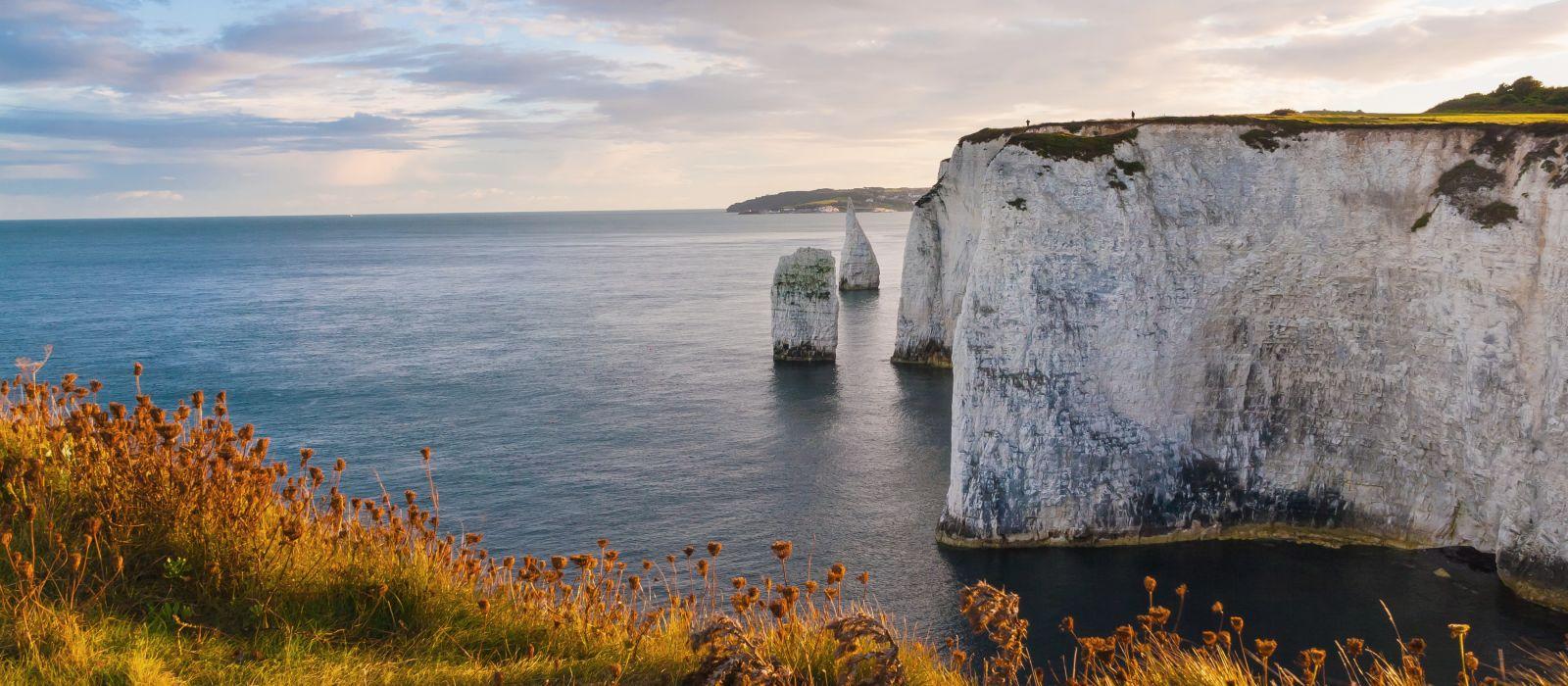 Evening light at Old Harry Rocks Dorset England UK Europe
