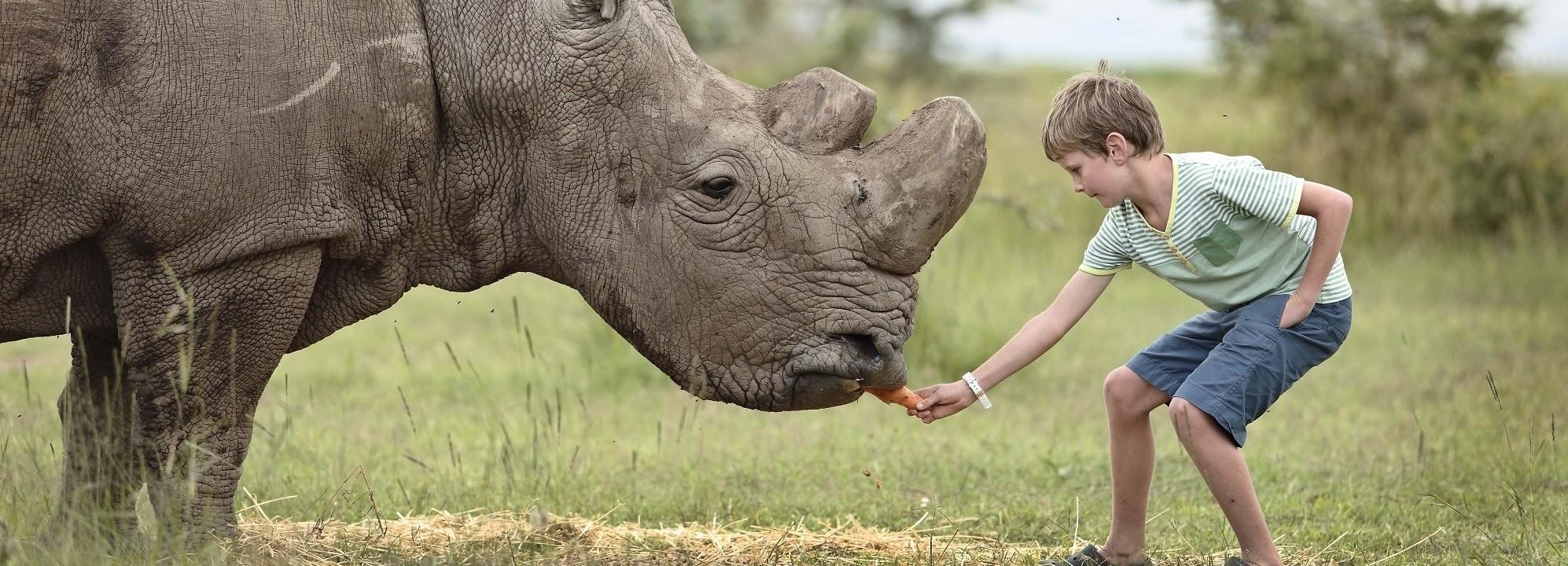 Boy interacting with rhino, Inspiring Encounters OPBC