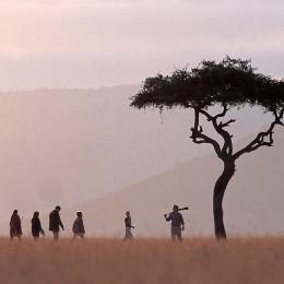 Take a walk through beautiful Botswana
