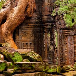 Ta Prohm temple, Angkor Wat complex, Siem Reap, Cambodia, Asia