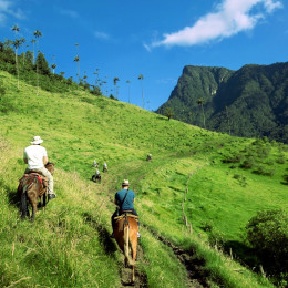 Horse riding, Colombia, South America